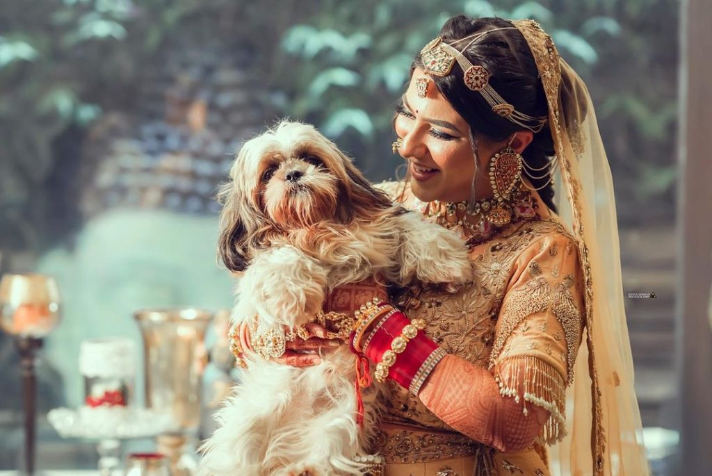Indian bride with her fur baby